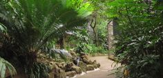About Us – Umgeni River Bird Park