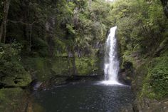 Waterfall in Te Puke, Bay of Plenty, New Zealand. Cliff jumping is one of my favorite travel activities =)