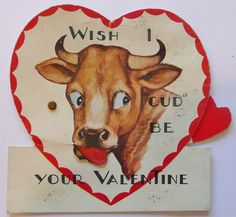 Because nothing's more romantic than a bovine's partially digested, vomited, re-chewed upchuck.