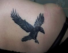 small crow tattoo on shoulder   Crow Tattoos Pictures And Images Page 58