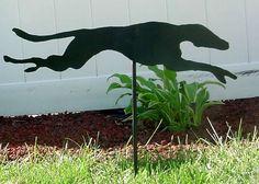 Garden Greyhounds --