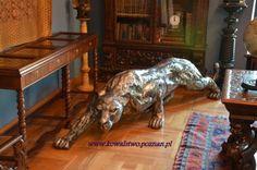 Zwierzęta z metalu , lwica wykota z metalu