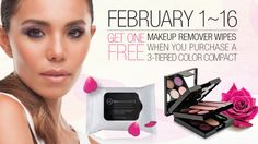 Beauticontrol February 2016 Special
