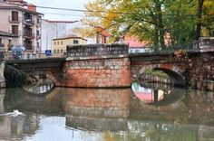 Fue uno de los pocos puentes que cruzaban el rio Duero en la edad Media (una de las cosas que dio relevancia histórica a este villa). Dieciséis arcos son los que tiene el puente. Junto al puente hay una pequeña presa, desde donde se puede admirar el comienzo del puente.