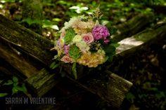 ERICKA + RYAN Photo Studio, Valentines, Plants, Wedding, Valentine's Day Diy, Valentines Day Weddings, Valentines Day, Plant, Weddings