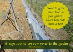 6 ways to use row cover in the garden to grow more food year round!   Montana Homesteader