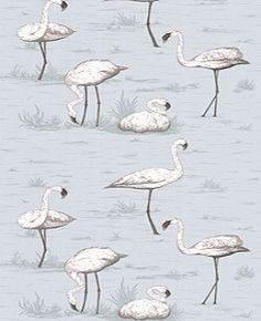 Flamingos 95-8047 Cole and Son Wallpaper