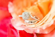 wedding and engagement rings from Virginia Wedding Salamander Resort by Katelyn James Photography