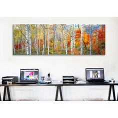You'll love the Panoramic Fall Trees, Shinhodaka, Gifu, Japan Photographic Print on Canvas at Wayfair Supply - Great Deals on all Décor  products with Free Shipping on most stuff, even the big stuff.