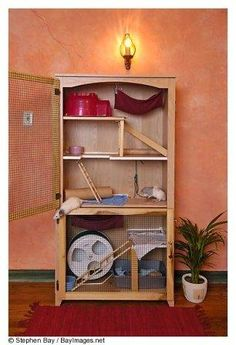 Ferret Cage out of old cupboard.... It fits in really good & My own DIY…