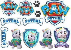 EDIBLE ICING PAW PATROL EVEREST DOGS SIGNS CAKE TOPPERS