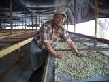 Genaro Herrera - the farmer of the Nicaragua CoE 2014 Lot 21 Farmer, Waterfalls, Wedding Ring, Farmers
