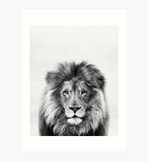 Design your everyday with lion art prints you'll love. Cover your walls with artwork and trending designs from independent artists worldwide. Safari Bedroom, Lion Poster, Scandi Home, Lion Print, Photo Canvas, Canvas Art Prints, Decor Styles, Photo Art, Just For You