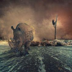 Manipulação do sonho - Caras Ionut http://500px.com/carasionut