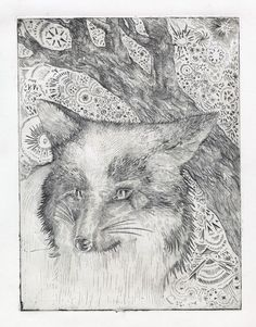 b56fc040e9a67c36-fox.jpg