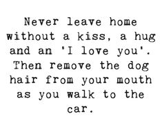 I Love Dogs, Puppy Love, Cute Dogs, Favorite Words, Favorite Quotes, Me Quotes, Funny Quotes, Boxer Love, Mishka