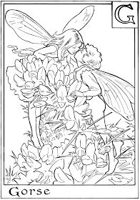 Letter O For Orchis Flower Fairy Coloring Page, alphabet flower fairies, alphabet coloring pages, girls coloring pages, Free online coloring pages and Printable Coloring Pages For Kids Coloring Pages For Teenagers, Coloring Pages For Grown Ups, Fairy Coloring Pages, Alphabet Coloring Pages, Free Printable Coloring Pages, Free Coloring Pages, Coloring For Kids, Coloring Books, Coloring Sheets