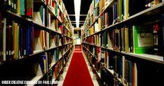 bibliotecologia - Buscar con Google