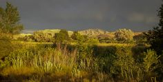 from the Edson Fichter Nature Area bike trail,  Pocatello, Idaho. 6 July 2015  21:57