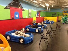 And when these puppers each had their own snazzy car-bed. 18 Times Doggie Day Care Was The Happiest Place On Earth Dog Boarding Kennels, Dog Kennels, Puppy Playground, Indoor Dog Park, Dog Backyard, Pet Clinic, Animal Clinic, Dog Rooms, Dog Play Room