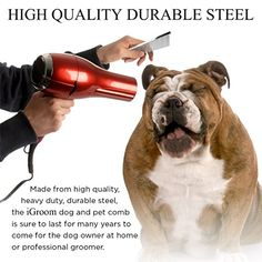 25 dogs that love reading reading about books pinterest dog dog grooming supplies durable steel pet comb with 100 money back guarantee free 65 page dog grooming e book use the comb with clippers scissors solutioingenieria