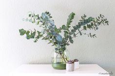 Eukalyptus in Elevated Vase von muuto - Dekoration für Wohn- oder Schlafzimmer