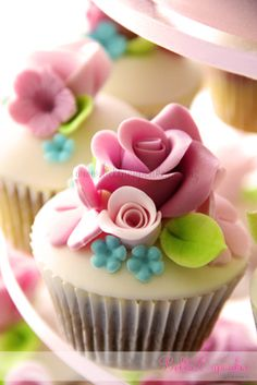 chocolate mint cupcakes with beautiful white modeling chocolate flowers. Fancy Cupcakes, Pretty Cupcakes, Beautiful Cupcakes, Yummy Cupcakes, Cupcake Cookies, Mocha Cupcakes, Gourmet Cupcakes, Velvet Cupcakes, Vanilla Cupcakes