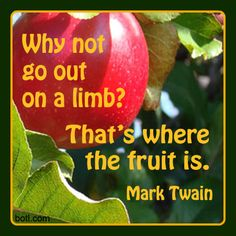 Sometimes it's best to reach outside our comfort zones. #quote #twain #limb