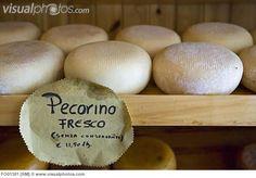 Italy Tuscany Pienza Pecorino Cheese In Cheese Shop Close up Pecorino Cheese, Cheese Shop, Queso, Royalty Free Photos, Tuscany, Italy, Stock Photos, Breakfast, Shopping