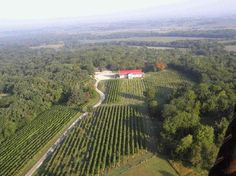 View of the Summerset Winery vineyards from a hot air balloon!