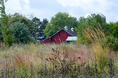 Photographs taken around Belvidere, Illinois