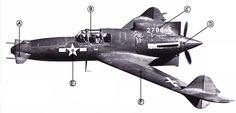 Curtiss XP-55 Ascender | The so-called Ass-Ender