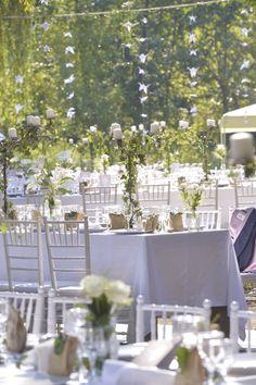 8 Best The Island Mures Images Island Islands Romanian Wedding