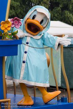 Donald Duck (Rainy Day Express, Hong Kong Disneyland) May 2013 Disney Duck, Disney Love, Disney Magic, Marvel Images, Disney World Parks, Disney Pixar, Parc Disneyland, Disney Characters Costumes, Donald And Daisy Duck