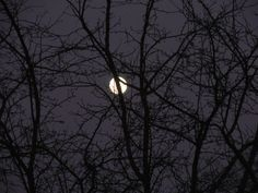 Full Moon Photography...Wall Art ..Home Decor by Trish Helsel Photography by TFAS on Etsy