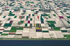 Breathtaking photography series highlights the beautiful tulip fields of the Netherlands   Creative Boom