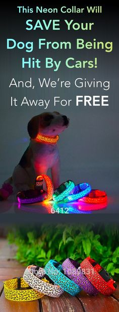 free neon light collar
