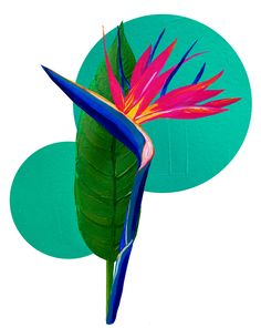 Bird of paradise at ArtfullyWalls, Bird of paradise flower on geometric shape