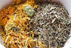 Zpracování bylinek - výroba macerátů, tinktur, sirupů a hydrolátů | Přímo od Včelařky