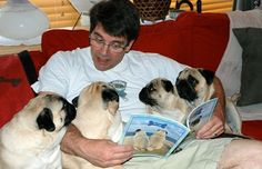So stinkin' cute....Pug storytime....love this guy's expression  ;)