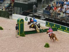 Photoblog: pony racing in Central Park - too cute!