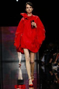 Paris Haute Couture A/W 2014  Armani Privé