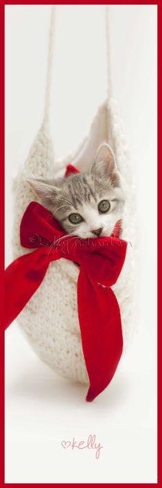 Christmas kitten bookmark