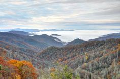 Great Smoky Mountains National Park, winter