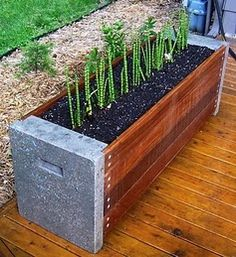 concrete and wood planter