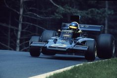 ronnie peterson | Ronnie Peterson (Germany 1973) by F1-history on DeviantArt