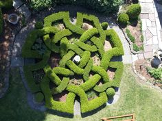 What Factors Should You Consider Before Retaining Landscape Design Services? Garden Hedges, Topiary Garden, Boxwood Garden, Garden Landscaping, Landscaping Ideas, Love Garden, Garden Art, Landscape Architecture, Landscape Design
