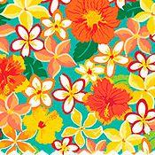 Hibiscus Medley (Multi)