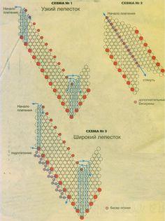 схема лепестка орхидеи