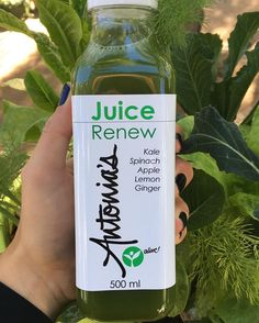 WE ARE SO EXCITED!!! we received our new #juice bottles today. Long awaited! They are soooo beautifulwe are also launching our GREEN CARD this weekend. Buy 12 of our drinks and receive the 13th one free! (Excludes juice cleanses) #drinkjuice #wellness #antonias #leafygreens #leafygreenscafe #greenjuice #juicecleanse
